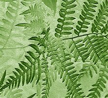 Hint Of A Fern by Ruth Palmer