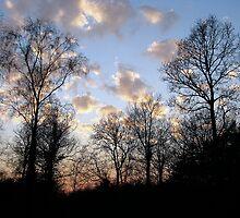Sunset 1 19-02-08 by Sharon Perrett