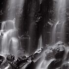 Mungalli Falls in Black &amp; White by AnnieD