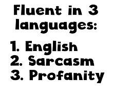 Fluent In 3 Languages Photographic Print
