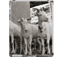 Three Goats iPad Case/Skin