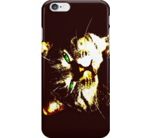 Stylized cat 2 iPhone Case/Skin