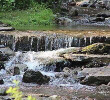 Summertime Falls at the Creek by Gilda Axelrod