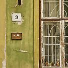 World, Walls, Windows & Doors by Adrian Rachele