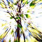 treeburst by PJGoncalves