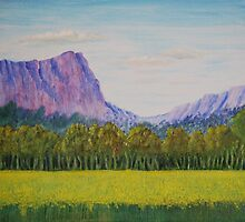 Canola Below Bluff Knoll W.A by robert murray