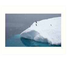 Snow storm, freezing wind ~ Life in the Antarctic goes on!! Art Print