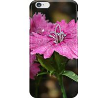 The Dianthus of the Divine iPhone Case/Skin