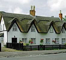 Thatched Cottages In Repton by Rod Johnson