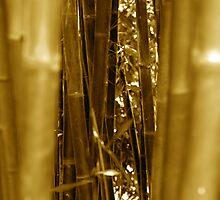 Bamboo Grove by Voytek Swiderski