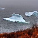 Fire & Ice by Kevin  Kroeker