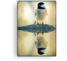 Reflecting Pool Chickadee Canvas Print