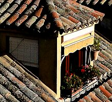 Rooftop window in Toledo, Spain by Elana Bailey