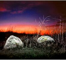 Two Rocks Alone by Mark Ross