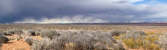 Storm front in Escalante, Utah by Brian Hendricks