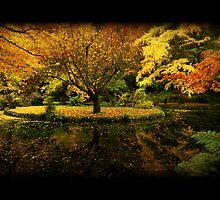 Autumn Again by Aaron .