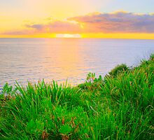 A New Day - Mona Vale Headland -Sydney Beaches - The HDR Series - Sydney Australia by Philip Johnson
