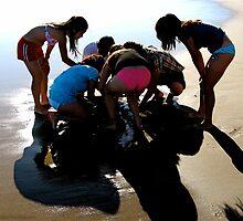 Sand Exam by Alvin-San Whaley