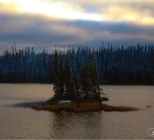 Remote Island in Northern Ontario by elisehendrick