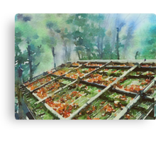 Forest Hut Roof with Moss and Fallen Autumn Leaves Canvas Print