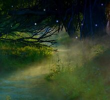 Where The Fairies Dwell by charlena