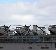 4 Helos on Deck by Sandra Chung