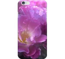 Pretty Pink Roses iPhone Case/Skin
