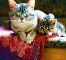 Kitten and Cat by emela1357