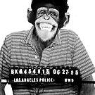 Hugh's a Cheeky Monkey? by Tate ©