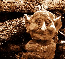 Wood Gnome. by Ginger  Barritt