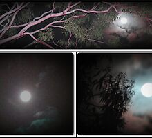 full moon collage by robert murray