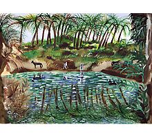 Donkeys drinking from the Jordan river Photographic Print