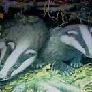 Badgers by GEORGE SANDERSON