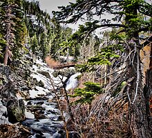 First sign of spring at Eagle Falls by M L Rondez