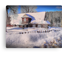 Sunny day after a snow storm  Metal Print