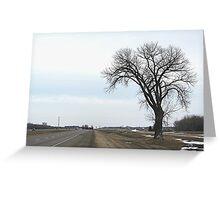 The Half Way Tree (between Winnipeg & Brandon MB) Greeting Card