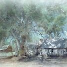 Old Wilpena Station by Jan Pudney