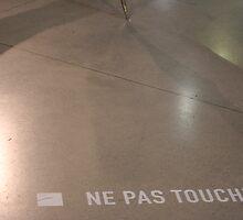 Ne pas toucher by Pascale Baud