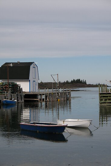 Blue Rocks, NS by Darlene Ruhs