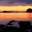 First West Coast Sunrise of 2015 by TerrillWelch
