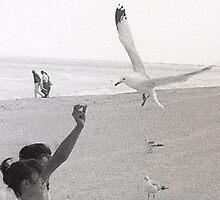 Seaguls by Lazarita Betancourt