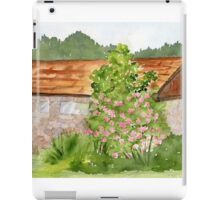 Bowman Bay Beauty iPad Case/Skin