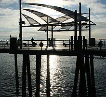 section of Redondo Beach Pier, California by organic
