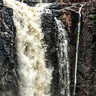 Iguazu Falls - in close by photograham