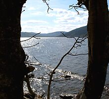 From The Shadows - Loch Ness by jacqi