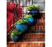 Four Blue Pots Photographic Print