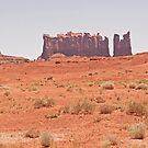 RT14 - Monument Valley by Buckwhite