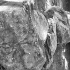 boulder line by harveyincairns