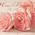 Happy Birthday Card - Pink Roses by Sandra Foster