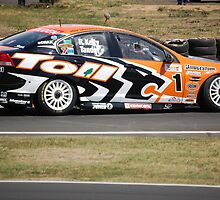 Rick Kelly/Garth Tander  by Craig Stieler